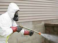 Pest Control & Inspection in California